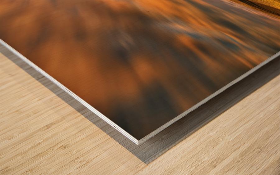 Cypresses... Wood print