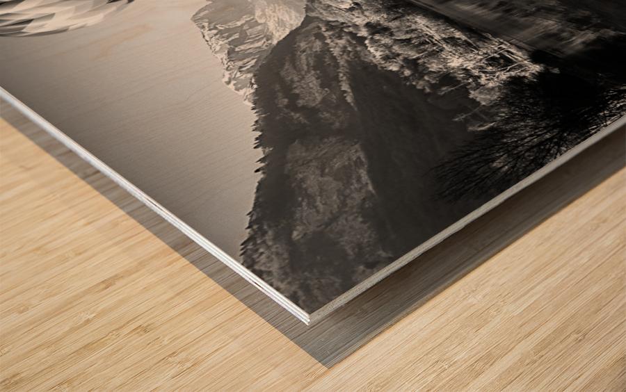 La mongolfiera Wood print
