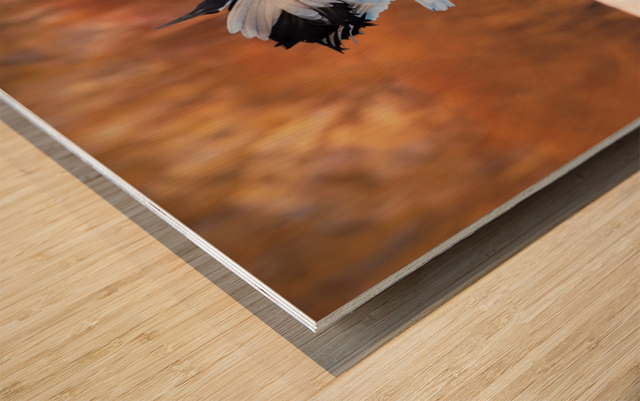 The dance of love Wood print