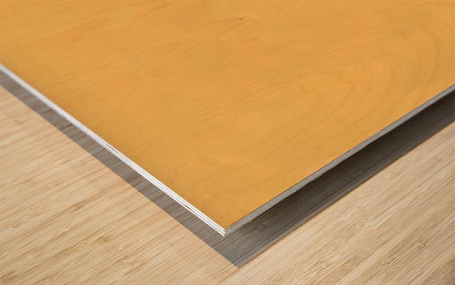 Der Anstreicher Wood print