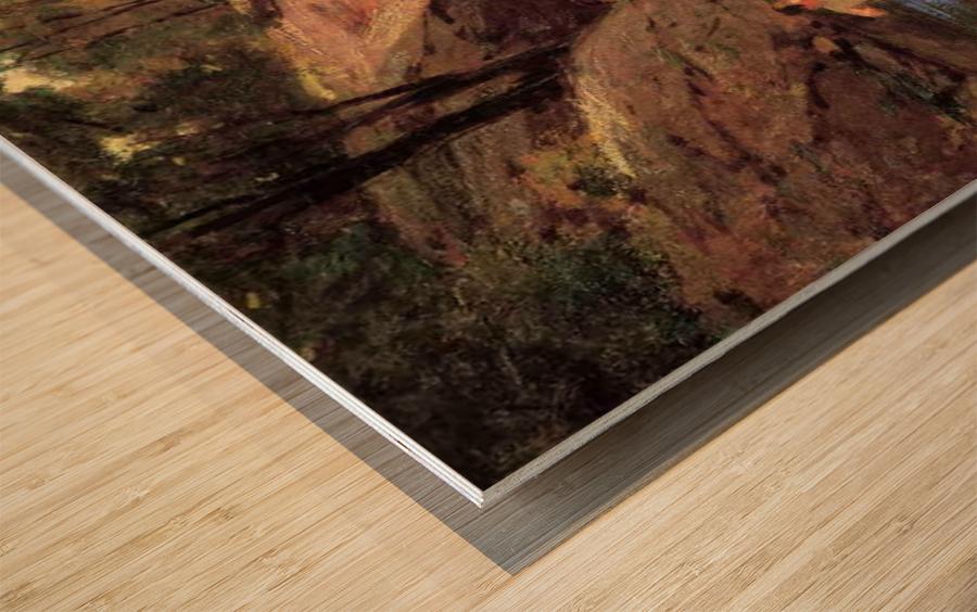 The Swimming Hole Wood print