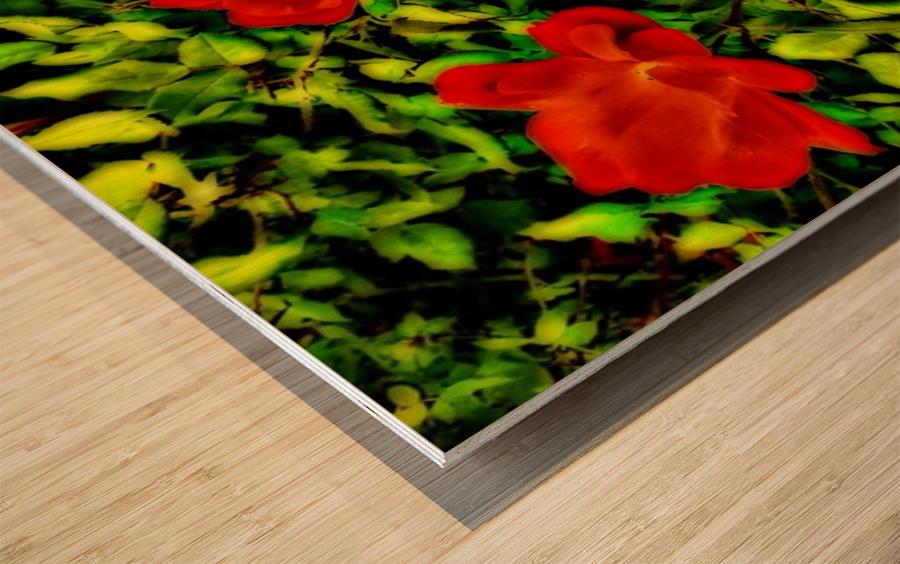 roselooking Wood print