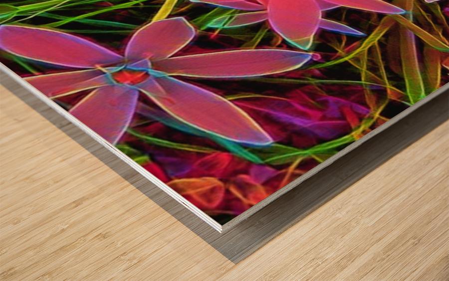 radiantplant Wood print