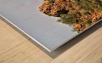 Jerome-5 Wood print