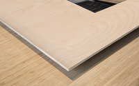 BLUEPHOTOSFORSALE 061 Wood print