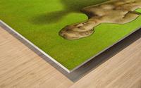 Grece Wood print
