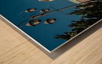 Nara Dreamland Wood print