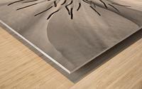 Clematis White Wood print