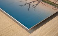 Wetlands at sunset with smoke haze. Wood print