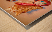 Sea Treasures Wood print