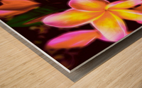 Frangipanis On The Glow Wood print