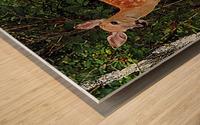 FawnBySaltBlock3 Wood print