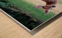 TwoFawns Wood print