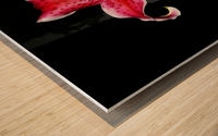 sofn-356C0972 Wood print