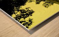 sofn-66E4BA18 Wood print