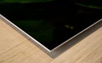 F (11) Impression sur bois