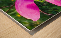 Peaceful pink  Impression sur bois