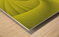 DNA Wood print