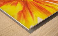 Bumblebee on Sunflower Wood print