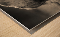 Bison love Wood print