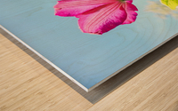 Pink flower and green leaves Wood print