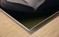 _49R9426 Modifier 2 Wood print