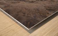 164A1267 Wood print