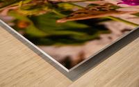 Offerings  Wood print
