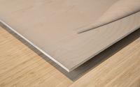 Pure Wood print
