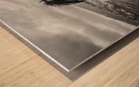 Wild and free Wood print