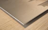 Dissolving Wood print