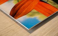 Sunflower  Impression sur bois