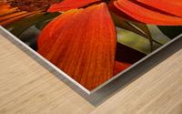 Sun Flowing flowers  Impression sur bois