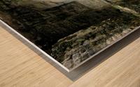 Myan13 Wood print