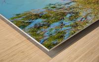 Outback6 Wood print