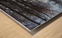 Follow me Wood print