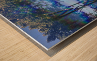 Canopy Gateway Wood print