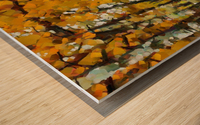 HC0274 Wood print