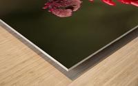 Red Flower Wood print
