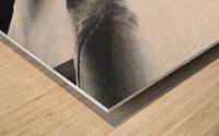 Cloud of Snow Wood print
