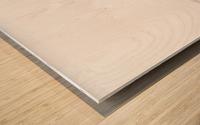 United 2 Wood print