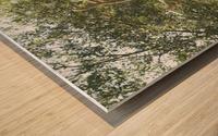 MosaïCanada 150 Display 5 Wood print