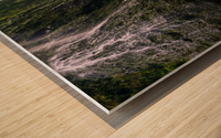 DSC07809 Wood print