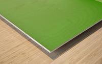 GREEN ABSTRACT  ORIGINAL Wood print