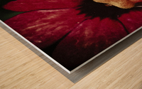 Red Impression sur bois