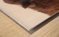 20190228 IMG_3587 2 Wood print