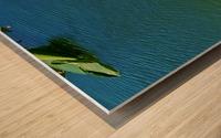 20190406_150448 Wood print