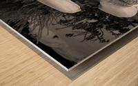 Easy To Estimate Snow Depth BW Wood print