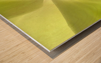 1 IMG_9153 Wood print