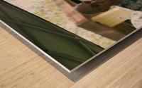 IMG_1567 Wood print